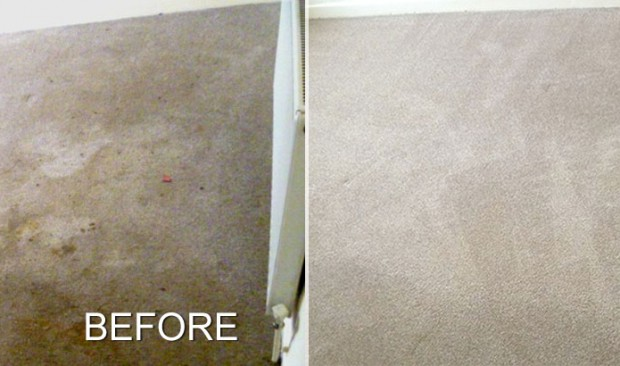 This carpet stood no chance against me, the best carpet cleaner by a scouse mile
